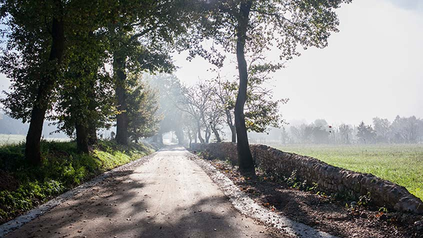 """Vecchia Flaminia"" road – Massa Martana – Perugia"